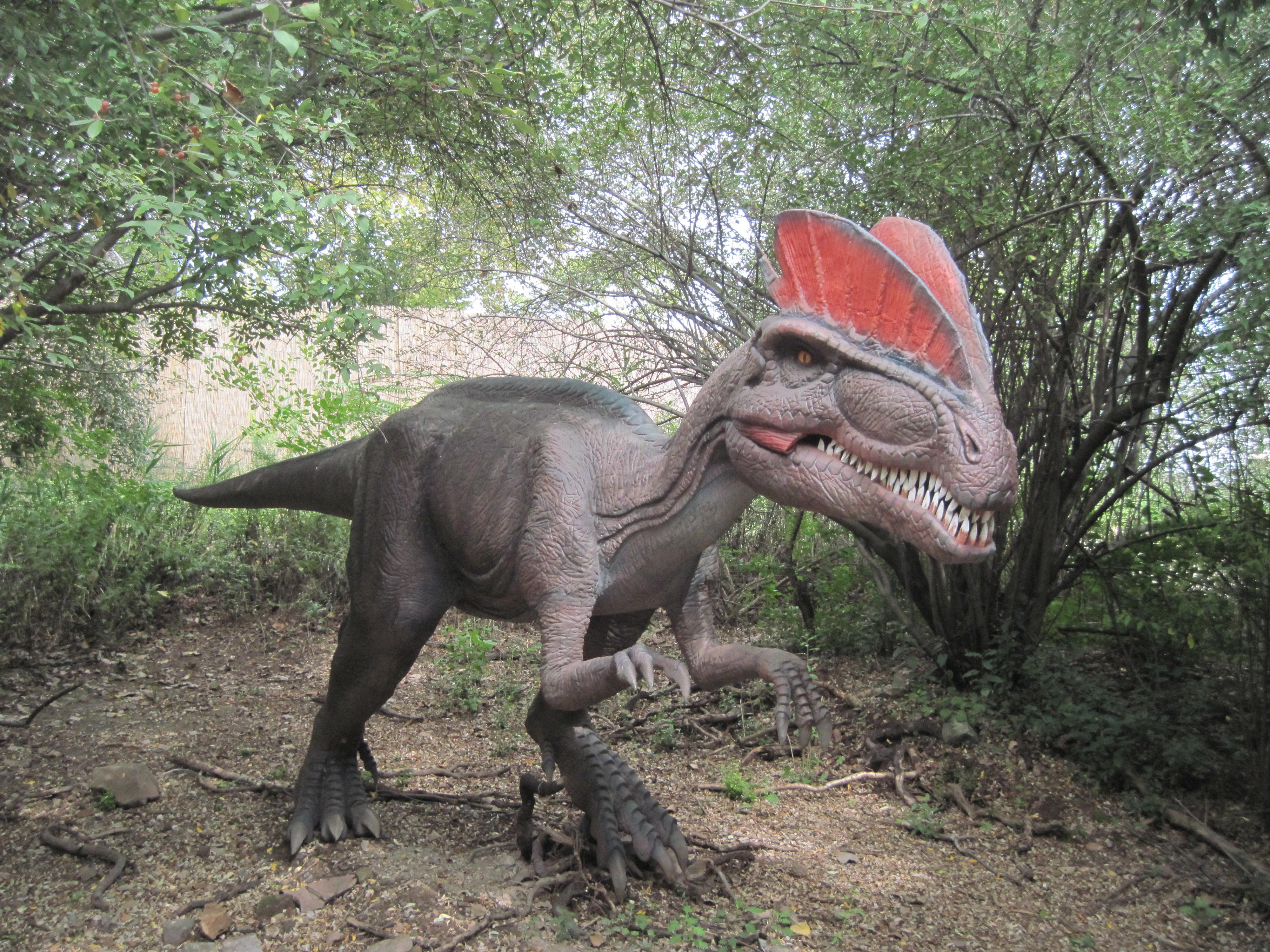 Review: Field Station: Dinosaurs - Jersey Kids