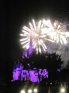 Fireworks at Magic Kingdom. Copyright Deborah Abrams Kaplan