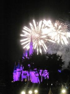 Fireworks at Magic Kingdom. Copyright Deborah Abrams Kaplan