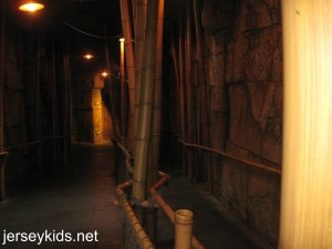 The FastPass line for Indiana Jones. That's right. there is no line!