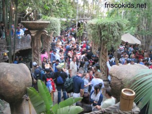 "This is the ""standby"" line for Indiana Jones. It's at least 70 minutes."