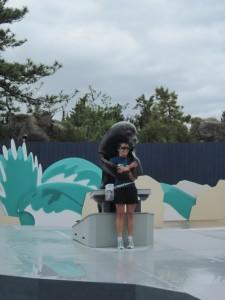 NY Aquarium's renovated Aquatheater. Copyright Deborah Abrams Kaplan