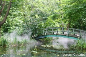 This is supposed to resemble Monet's garden and bridge - which it totally does. They pipe in the smoke/fog for effect.