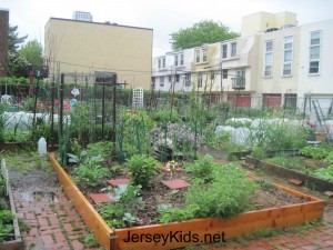 Pocket neighborhood gardens around Philadelphia