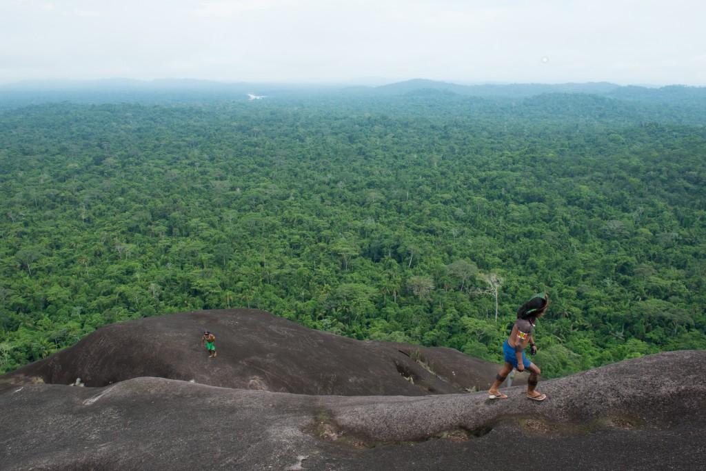 kayapo rain forest