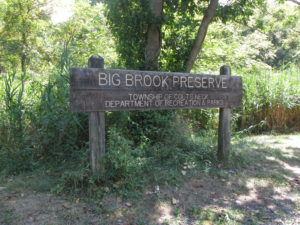 Big Brook Preserve. Copyright Deborah Abrams Kaplan