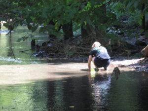 Sifting through the debris in the stream. Copyright Deborah Abrams Kaplan