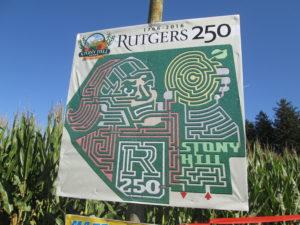 Rutger's 250th anniversary corn maze at Stony Hill. Copyright Deborah Abrams Kaplan